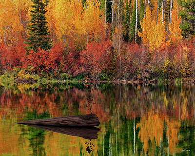 Photograph - Autumn Reflections by Leland D Howard