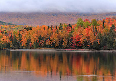 Photograph - Autumn Reflections On First Roach Lake by Dan Sproul