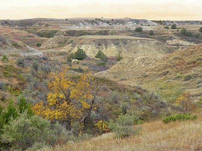 Photograph - Autumn Reverie In Slope County by Cris Fulton
