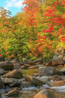 Photograph - Autumn River by Dan Sproul