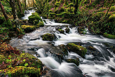 Photograph - Autumn River Rapids by Adrian Evans