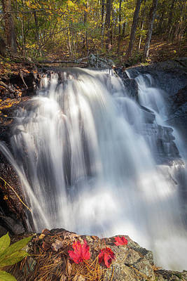 Photograph - Autumn - Secret Waterfall 4 by Brian Hale