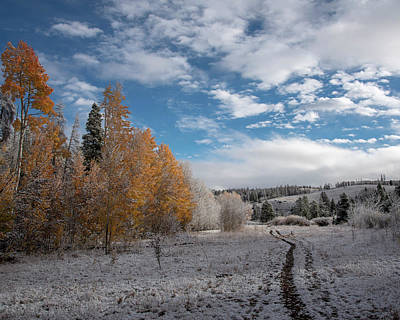 Photograph - Autumn Snowfall by Brian Stricker
