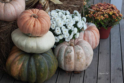 Still Life Royalty-Free and Rights-Managed Images - Autumn Still Life I by Suzanne Gaff