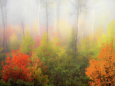 Photograph - Autumn Stillness 2 by Leland D Howard