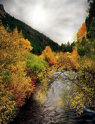 Photograph - Autumn Stream by Leland D Howard