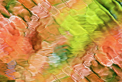 Bath Time Rights Managed Images - Coral Coast Water Abstract Royalty-Free Image by Christina Rollo