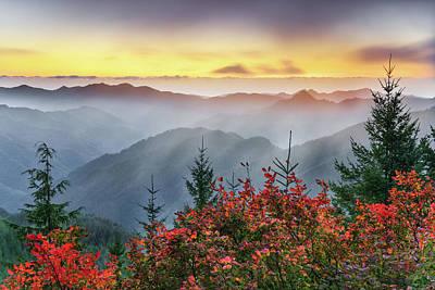 Photograph - Autumn Tillamook View by Leland D Howard