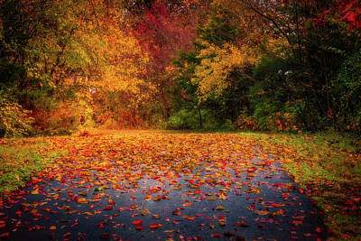Photograph - Autumn Trail by Allin Sorenson