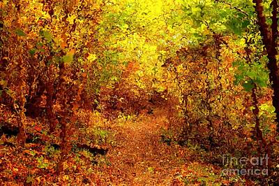 Digital Art - Autumn Trail In Van Gogh Style by Christopher Shellhammer