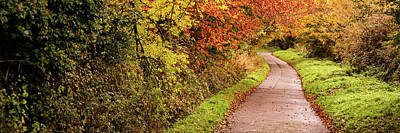 Photograph - Autumn Trails by Steve Elliott