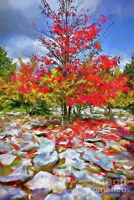Painting - Autumn Trees And Rocks - Fall Colors Ap by Dan Carmichael