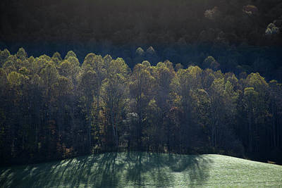 Photograph - Autumn Trees Line Smoky Mountains by David Chasey