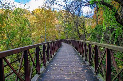 Photograph - Autumn Walk - Lincoln Drive by Bill Cannon