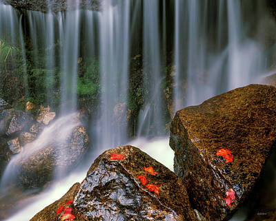 Photograph - Autumn Waterfall by Leland D Howard