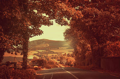 Photograph - Autumn Way To Sugarloaf Hill. Ireland by Jenny Rainbow