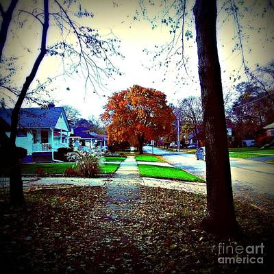 Frank J Casella Royalty-Free and Rights-Managed Images - Autumn Wonder by Frank J Casella