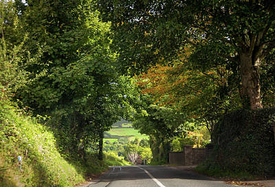 Photograph - Autumnal Tunnel. Way To Sugarloaf Hill. Ireland by Jenny Rainbow
