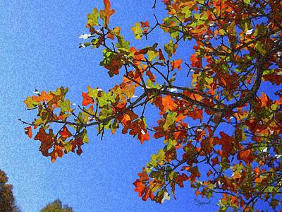 Autumn's Colors Art Print
