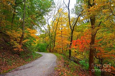 Photograph - Autumn Fall Country Road by Christopher Shellhammer