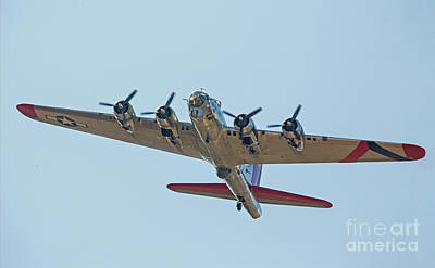 Photograph - B-17 Bomber In Flight  by Kevin McCarthy