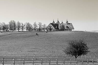 Photograph - B And W Horse Farm by Jack R Perry