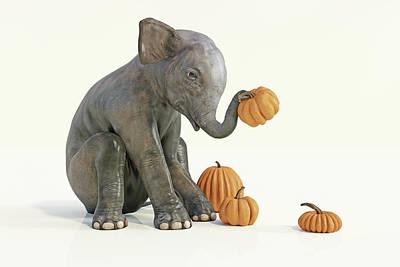 Animals Digital Art - Baby Elephant and Pumpkins by Betsy Knapp