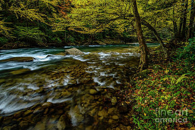Photograph - Back Fork Of Elk River Fall  by Thomas R Fletcher