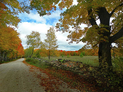 Photograph - Back Road Fall Colors by David T Wilkinson