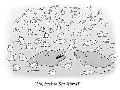 Drawing - Back To Sea World by Kim Warp