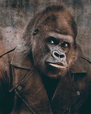 Digital Art Rights Managed Images - Bad boy gorilla Royalty-Free Image by Mihaela Pater