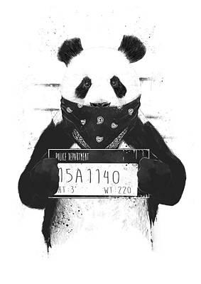 Drawing - Bad Panda by Balazs Solti