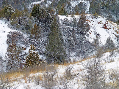Photograph - Badlands Winter by Cris Fulton