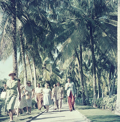 Photograph - Bahamas Palm Trees by Slim Aarons