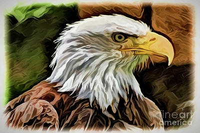 Painting - Bald Eagle A1929 by Ray Shrewsberry