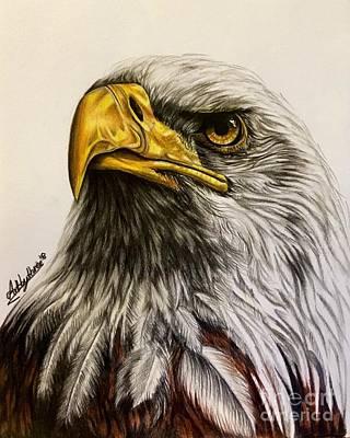 Drawing - Bald Eagle by Art By Three Sarah Rebekah Rachel White