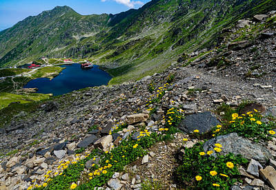 Wild And Wacky Portraits - Balea lake in Romania seen on a sunny day. by George Afostovremea