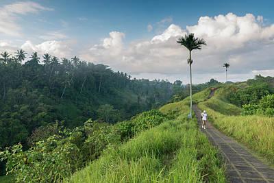 Photograph - Bali Pathway by Ian Robert Knight