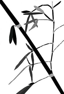 Photograph - Bamboo Impressions F Bw by Jim Dollar