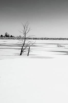 Photograph - Bank by Dan Urban