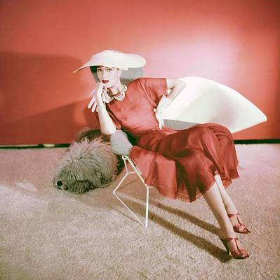 Photograph - Barbara Mullen Wearing Traina-norell by Horst P. Horst