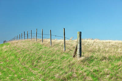 Photograph - Barbed Boundary by Todd Klassy