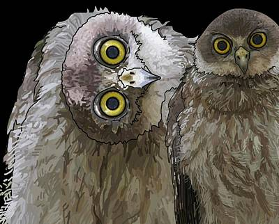 Barking Owls 2 Art Print