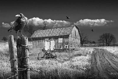 Photograph - Barn For Sale With Black Crows In Black And White by Randall Nyhof