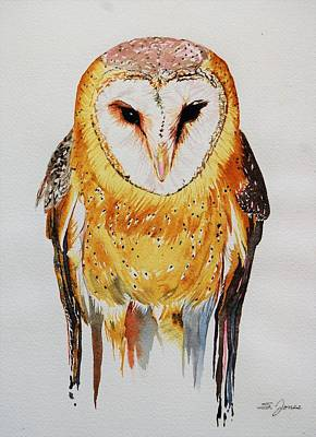 Painting - Barn Owl Drip by Sonja Jones