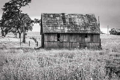 Photograph - Barn With Metal Roof In Monochrome by Randy Bayne