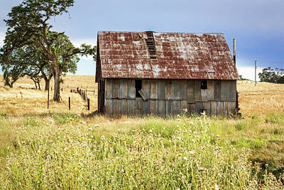Photograph - Barn With Metal Roof by Randy Bayne