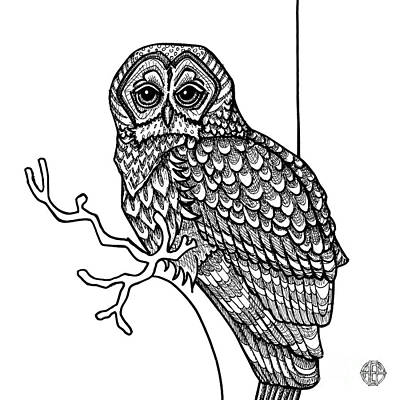 Art Print featuring the drawing Barred Owl by Amy E Fraser