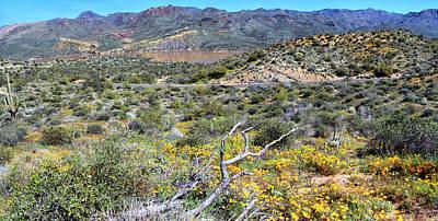 Photograph - Bartlett Lake Wildflowers 5714-5419-030519 by Tam Ryan