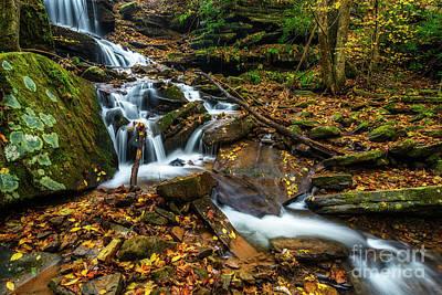 Photograph - Barton Mill Run Waterfall  by Thomas R Fletcher